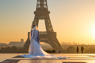 The Lonely Bride