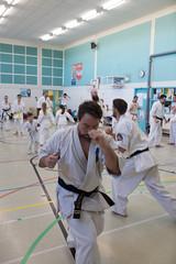 seminaire-karate-laval-rimouski (8)