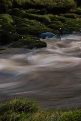 Bolton Abbey Water