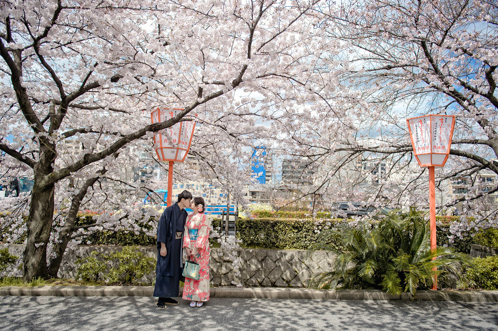 京都婚紗 花見小路櫻花婚紗拍攝