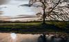 Devil's Water (Blaydon52C) Tags: dilston dyvelston corbridge devils water class142 pacer dmu railway rail railways railroad autumn reflections reflection tynevalley tyne sky tree trees northumberland northeast northumbria
