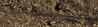 Holland - Lek river / wetlands (Eduard van Bergen) Tags: water stream sand light bank riverbank molenwaard alblasserwaard holland netherlands niederlande dutch dike dijk krib breakwater nature clear spring day quiet lagune lagoon breaking waves cool steady geul gully high tide landscape sediment boots wading wet wetland roads path reed brakewater grass wetlands flooded dry paths wood boat lek sony alpha ilce sky field tree rhine bergstoep bay krimpenerwaard bergambacht time lost collection park river rivier bird sea strand rock beach forest small horizon
