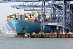 Ebba Maersk (Yorkshire's Finest) Tags: portoffelixstowe shippingcontainer ebbamaersk maersk maerskline containership