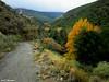 Sendero Castañar la Rosandrá (Jotomo62) Tags: andalucia provinciadegranada aldeire parquenacionaldesierranevada jotomo62