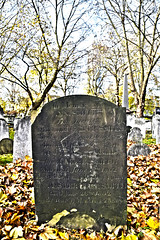DSC_1838 HDR London City Road Bunhill Fields Non Conformist Cemetery Autumn In Memory of Ann Smith Daughter of John & Cath. Smith of Bridgewater Square Cripplegate who died June 30th 1799 Aged 4 Years & 7 Months (photographer695) Tags: london city road bunhill fields non conformist cemetery autumn in memory ann smith daughter john cath bridgewater square cripplegate who died june 30th 1799 aged 4 years 7 months