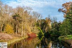 Stowe_DSC8047 (Nick Woods Photography) Tags: landscape autumn autumncolours autumnleaves autumntrees autumnlandscape water waterscape waterreflections waterscene reflections reflectionsinwater treereflections stowe nt nationaltrust