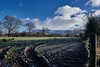 Chill in the Air (scottprice16) Tags: england lancashire clitheroe highmoor view rural landscape field mud muddy rian snow weather cloud sky blue autumn november fujixt1 18135mm ribblevalley