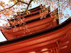 Autumn Pagoda (somazeon) Tags: japan miyajima pagoda hiroshima 豊国神社 宮島 広島 日本 秋 autumn fall maple