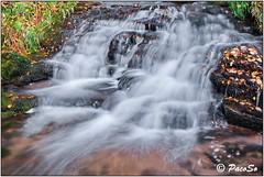 Agua corriente (PacoSo) Tags: natura agua cascada navarra pacoso
