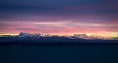 Sunset on the Alps - Neuchâtel - Switzerland (Rogg4n) Tags: mountain montagne chaîne sunrise dawn rain switzerland neuchâtel panorama goldenhours sky clouds landscape inconic typical alps dramatic pink peak snow sumit europe mounts swiss landmark outdoor suisse schweiz landschaft nature dreamscape burning lake canoneos80d longexposure ndfilter nd hoya le efs18135mmf3556isstm