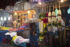 மழை (Vilvesh) Tags: cwc chennaiweekendclickers parryscorner chennai monsoon rain rainyday rainisbeautiful nikond750 nikon50mm flowers flowermarket people