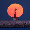 Man (up)on the moon (Robyn Hooz) Tags: moon superluna super luna faro diga view men people gente venezia