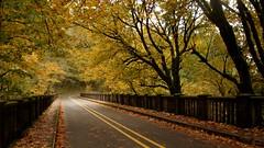 Remember Autumn - Bridge at Latourell Falls (Joe Son Nguyen) Tags: autumn fall colors portland oregon columbia river gorge latourell bridge pentax 18250mm ed al