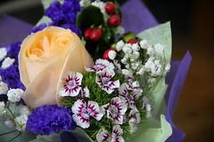 Bouquet details (Yukkuriko) Tags: singapur singapore bearbeitet square blumen blüten flowers blumenstraus bouquet flowerbouquet 花