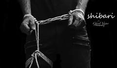SHIBARI (TheGhostVaporVision) Tags: shibari bondage hogtie tied knots rope art artist photographer ghostvaporphotography
