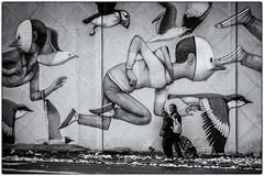 Drôles d'oiseaux ! (bertranddorel) Tags: fresquemurale fresque peinture rue street streetphoto noiretblanc bnw bw bn blackandwhite mono monochrome oiseau bird personnes human people vol masque art artistique saintmalo bretagne france europe