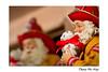 Le Père-Noël est un pompier ;-) / Santa Claus is a firefighter ;-) (Thierry De Neys - Photographies) Tags: thierrydeneys hainaut belgique belgium belgïe chiot chien dog jaube geel yellow rouge red rood casque helm helmet vestedefeu firejacket pompier brandweerman firefighter fireman barbe blanc wit white baard beard reflection reflet