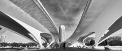 Sweet Curves (elgunto) Tags: architecture bridge valencia curves sky buildings people street silhouette blackwhite monochrome sonya7 nikon2035 ai nikkor manuallense