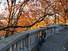 IMG_8557 (1) (Brooklyn Cyclist) Tags: brooklyn manhattan riverside 96 116 115 street morningside