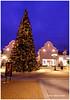 Holiday Season - Templeton XP7393e (Harris Hui (in search of light)) Tags: harrishui fujixpro2 digitalmirrorlesscamera fuji fujifilm vancouver richmond bc canada vancouverdslrshooter mirrorless fujixambassador xt1 fujixcamera fujixseries fujix fuji1024mmf4 fujizoomlens christmas happyholidays holidays holidayseason christmastree mcarthurglendesigneroutlet