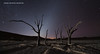 Hercules Rising - D850 timelapse (Marsel van Oosten) Tags: squiver marselvanoosten phototours africa namibia botswana deadvlei night sky stars dark darkness video timelapse desert nikon d850