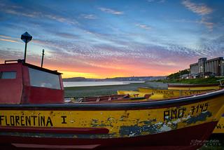 Florentina I - Caleta Pichipelluco (Patagonia Chile)