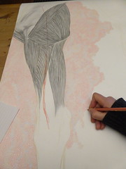 work in progress (Brynhild E Winther) Tags: brynhildwinther teikning drawing detail pink pencil grey animal art animism