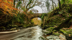 Green bridge in the Roe valley country park (jac.photography49) Tags: canon northernireland exposure fullframe river water roevalley countrypark autumn
