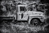 International Beauty (D E Pabst Photography) Tags: truck rusted abandoned automotive international garfieldcounty
