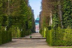 Germania-Polonia 2017 (Pucci Sauro) Tags: germania potsdam sanssoucipark