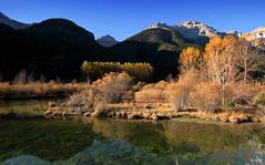 ...de otoño... (Garciamartín) Tags: montañas agua otoño árboles pirineos pineta paisaje reflejo garciamartín nino aragón españa europa estanque lago