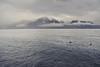 Calm (1946pixels) Tags: nikon switzerland d3100 nikond3100 nature europe mountains lake geneva montreux