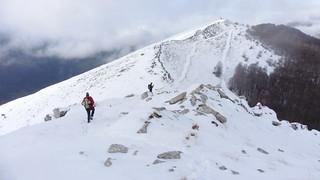 discesa dal Monte Palombo (2013 m), Parco Nazionale d'Abruzzo, Lazio e Molise, Pescasseroli (AQ)