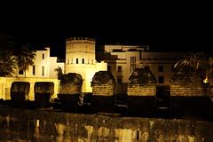 100T6060 (Enrique Romero G) Tags: torre plata sevilla nocturna noche night fujix100t