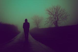 Walk In Silence (325/365)