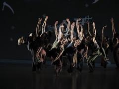 _9041683 (黎島羊男) Tags: 雲門 關於島嶼 林懷民 formosa cloudgatedancetheatre cloudgate dance theatre linhwaimin olympus em1markii zuiko 1454mm