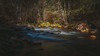 A Walk Through the Woods. (CEBImagery.com) Tags: arizona creek oak sedona bigstopper stopper big