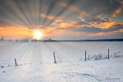 Winter Sunset (guysamsonphoto) Tags: guysamson sonyalpha6300 zeiss1635 neige snow sunset