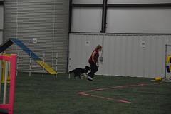 DSC_6568 (jaimekay16) Tags: dog agility k9x k9 xpress leander texas