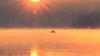 Basking-in-the-Golden-Light (summer-2009) Tags: sunrays light golden sunbeam reflection dam pond man fishingpole paddle boat fisherman fishing sunrise sunshine sun fog morning