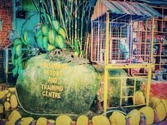 Kalumpang Resort & Training Centre - Kalumpang - http://4sq.com/gksvwq #traveling #holidays #holidayMalaysia #travelMalaysia #Asia #Malaysia #Selangor #旅行 #度假 #马来西亚旅行 #马来西亚度假 #亚洲 #马来西亚 #雪兰莪 #发现大马 #发现马来西亚 #自游马来西亚 #green #绿色 #大自然 #nature #resort #度假村