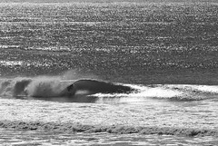 Silver Surfer (Omnitrigger) Tags: surf surfer tuberide tube barrel silversurfer california centralcoast greenroom style shacked beachbreak offshore swell westswell spotcheck