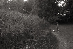 Tiergarten Berlin (elisachris) Tags: tiergarten berlin englischergarten natur nature schwarzweis blackandwhite sepia ricohgr