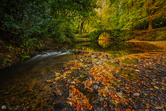 The Old Stone Bridge. (MNM Photography 2014) Tags: stonebridge stone stonewall bridge river autumn autumnal autumncolours autumnleaves flowingwater stream burn colourful colours fall fallcolours goldenlight golden flow trees beechtrees beech woods woodland seasons seasonal riverbed riverside hidden countyderry northernireland ulster ireland orangeleaves stones reflections reflection reflected reflectionsinwater canon canon5dmkiii canonphotography canon1635mmf4isusm leefilters leelandscapepolarisingfilter landscape landscapephotography ngc everythingscenery