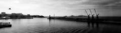 le port de Marseille - depuis le J1 (olivierurban) Tags: jetée phare marseille france port j1 grue frioul ile sonyilce7m2 fe1635mmf4zaoss