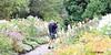 REFORD GARDENS      |  THE LONG WALK  |  ALLEE ROYALE |    REFORD GARDENS  |   LES JARDINS DE METIS  |  METIS   |  GASPESIE  |  QUEBEC  |  CANADA (J.P. Gosselin) Tags: reford gardens | the long walk allee royale les jardins de metis gaspesie quebec canada canon7dmarkii canon 7dmarkii 7d markii mark ii canoneosrebelt2i canoneos7d canon7d eos7d canoneos eos rebel t2i ph:camera=canon