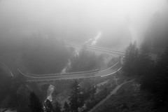 Bridges in the fog (d/f) Tags: brücken bridges viadukte viaducts graubünden grisons schweiz switzerland suisse nebel dust dunst haze rhb rhätische bahn albula albulapass fog blackwhite blackandwhite schwarzweis schwarzweiss oder black white schwarz weiss