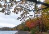 DV2A0013 (Digital_trance) Tags: 日本 日本東北 楓 楓葉 紅葉 山形 青森 秋田 yamagata やまがた akita あきた aomori あおもり landscape 日本風景 japan 岩手山