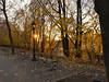 IMG_8552 (1) (Brooklyn Cyclist) Tags: brooklyn manhattan riverside 96 116 115 street morningside