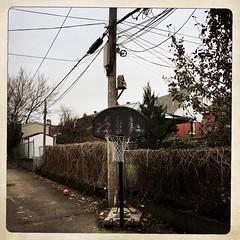Il faudra faire le ménage dans la ruelle avant l'hiver... (woltarise) Tags: ruelle rosemont montréal basket panier ballon